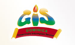 Government Information Service (GIS)